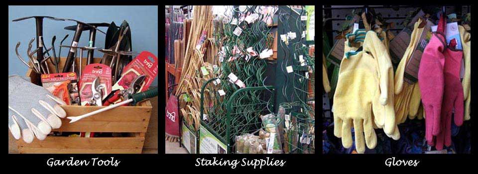 Tomato stakes, garden gloves